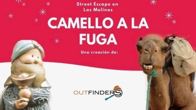 Camello a la Fuga, un Street Escape en Los Molinos y Collado Mediano esta Navidad