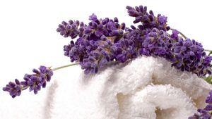 El efecto calmante y relajante en la piel de la lavanda y la menta