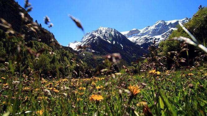 Campings para disfrutar de los Parques Nacionales