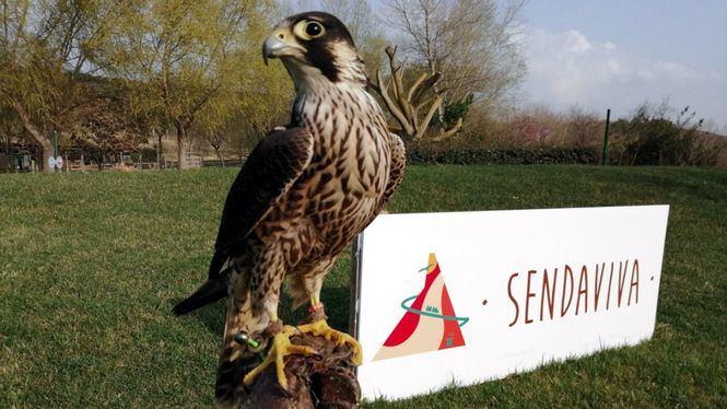 El parque Sendaviva regresa coincidiendo con el inicio de la Semana Santa