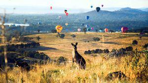 Canberra: Un destino culinario emergente