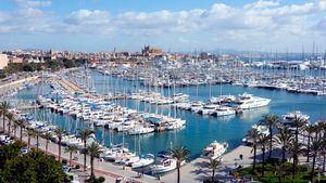 Puerto deportivo (Palma)