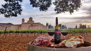 Planes para disfrutar de la Ruta del Vino Ribera del Duero en el Día de Castilla y León