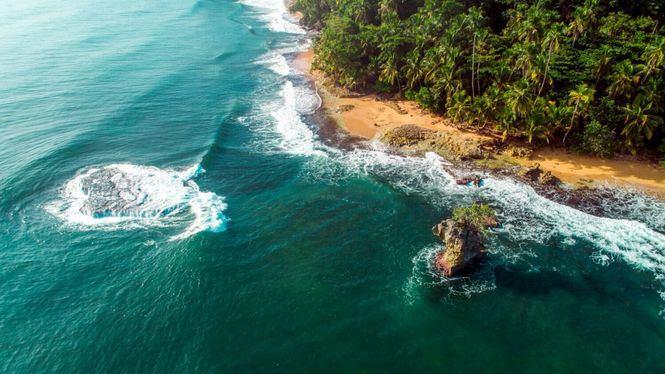 Centroamérica y República Dominicana apuestan por la sostenibilidad aplicada a la gastronomía