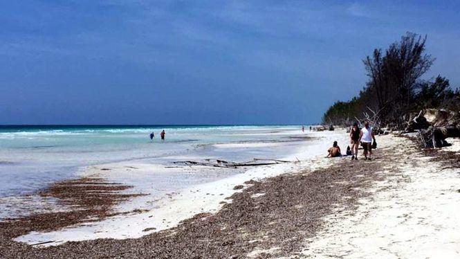 Tesoros naturales de Las Bahamas, un viaje al origen del ecoturismo