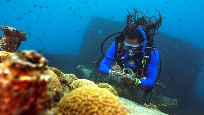 PADI, la organización de buceo más grande del mundo quiere restaurar la salud de los océanos