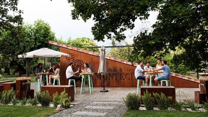 Vino, gastronomía y música en directo en la terraza de verano de Bodegas Montecillo