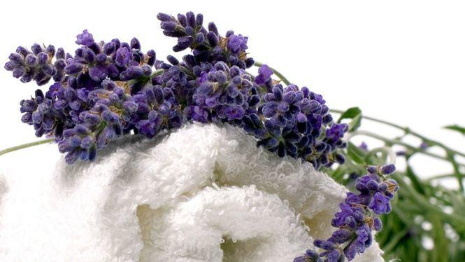 Los beneficios de la lavanda y la menta para la piel