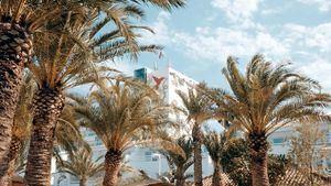 Palmarama se celebrará en Ushuaïa Ibiza Beach Hotel tras 21 meses de inactividad musical