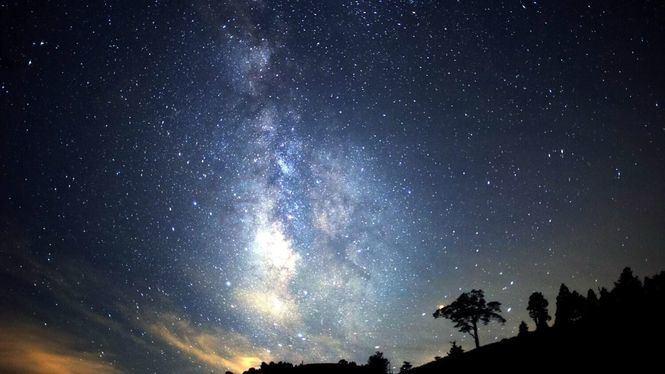 Observar las estrellas en Japón desde lo alto de un árbol