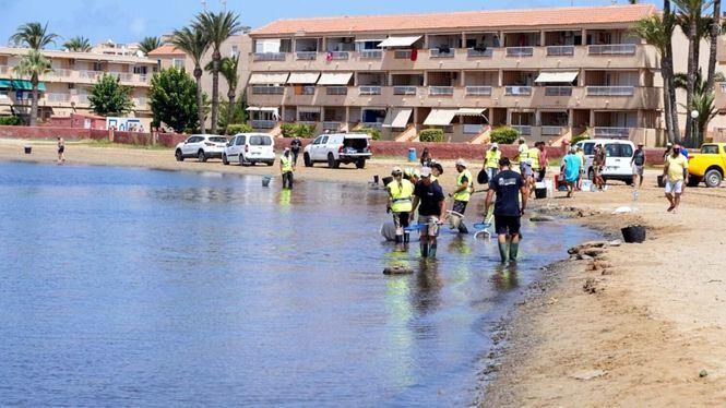 Ocho playas del Mar Menor se cierran para facilitar su limpieza