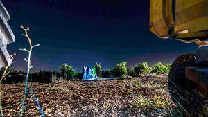 Actividades y experiencias en la Ruta del Vino de Rueda en la vendimia