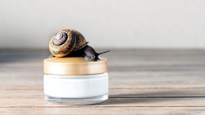 Los beneficios cosméticos de la baba de caracol