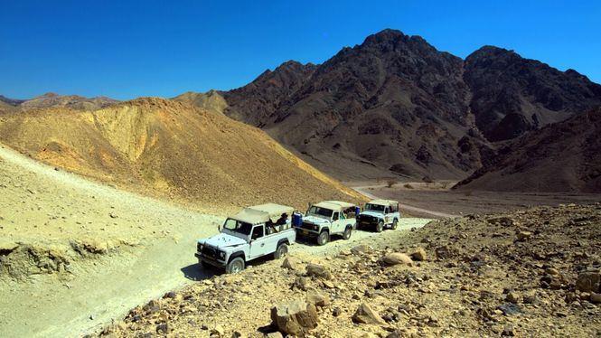 Diferentes formas de descubrir el desierto del Negev