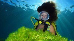 Las Palmas de Gran Canaria acoge la novena edición del Concurso de Fotografía Submarina
