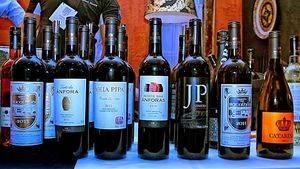 Recorrido por la región de Lisboa a través de sus vinos