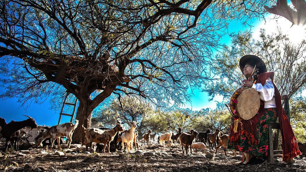 La diversidad de la oferta turística de Tucumán