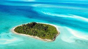 Nadar con cerdos en el paraíso de Big Major Cay