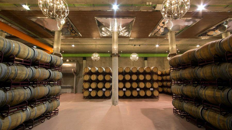II ciclo de 'Música entre Barricas' en Pagos del Rey Museo del Vino
