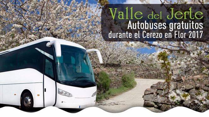 Cuatro rutas gratuitas en bus recorrerán la Primavera del Valle del Jerte