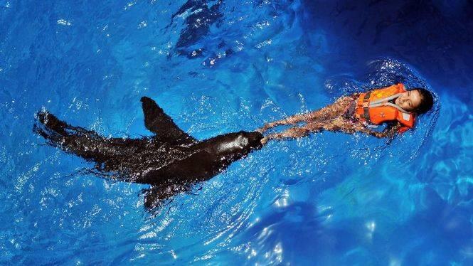Oasis Park Fuerteventura: naturaleza y aventura en familia