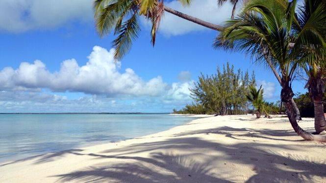 Bahamas: Bucear en las profundidades de agujeros azules