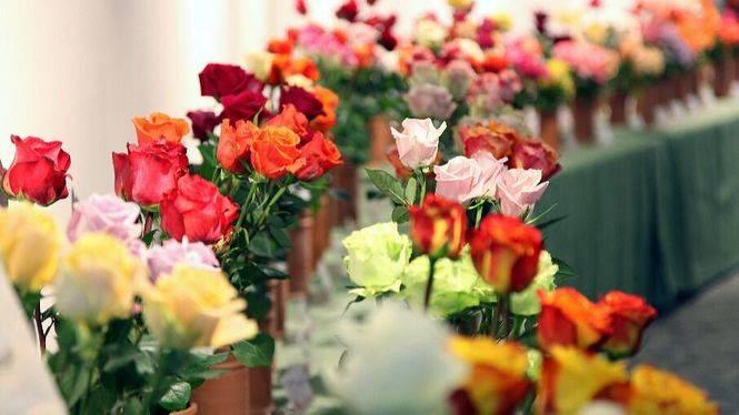 Roses celebra los días 27 y 28 de Mayo la VI Feria de la Rosa