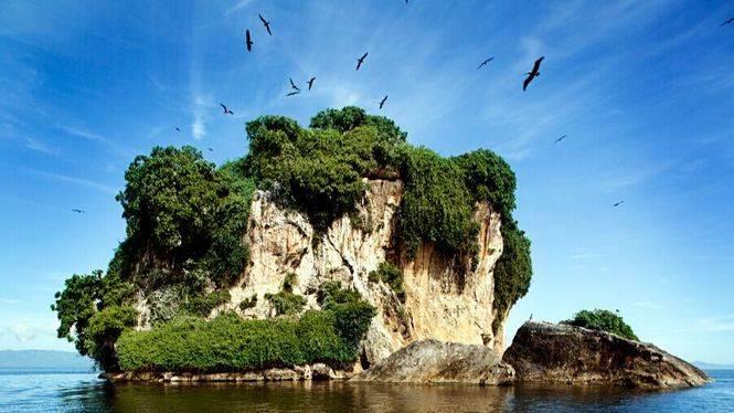 Flora y fauna de la República Dominicana, un auténtico paraíso