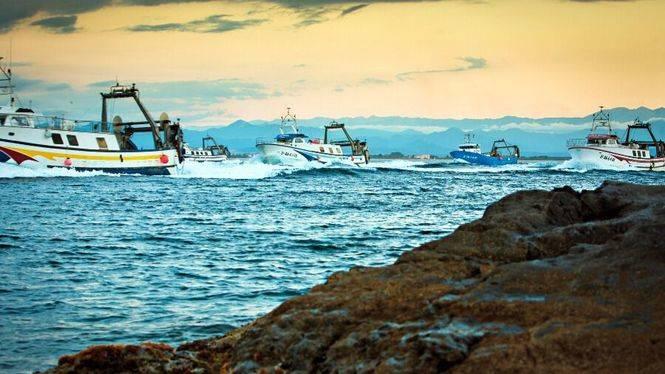 Visitas guiadas al puerto pesquero de Roses