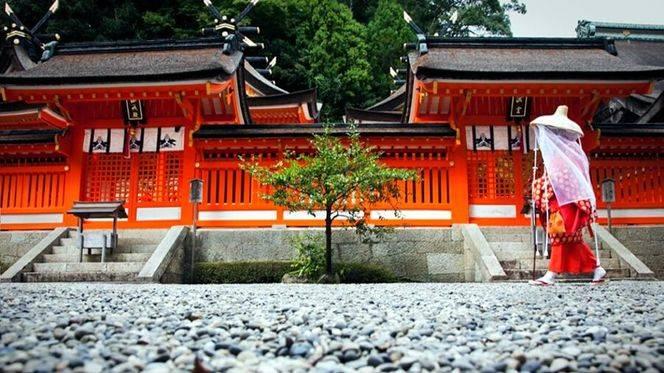 'Kumano Kodo. El camino nipón', fotografías que enseñan la mayor ruta de peregrinación de Japón