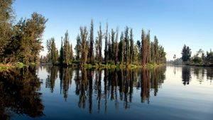 México DF. Lago de Xochimilco