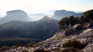 Paraje Natural. Sierra de Tramontana