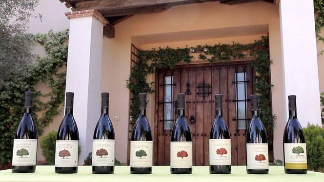 Los vinos Cartema se servirán en la Embajada española en Londres