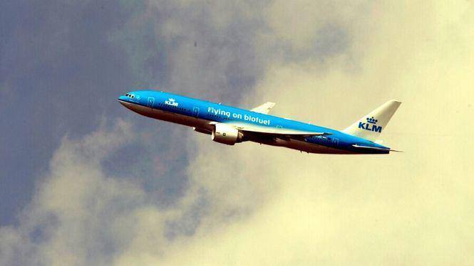 KLM contribuirá a la reforestación de la Península Ibérica
