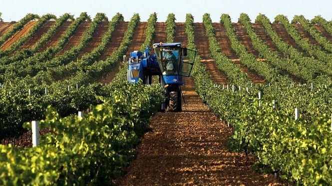 Bodegas De Alberto incluida en el Decálogo de Sostenibilidad de la Industria Agroalimentaria
