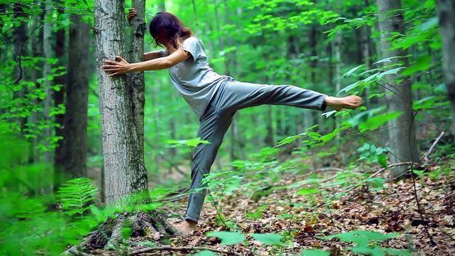 Shinrin-yoku, eliminar el estrés conectándose con la naturaleza
