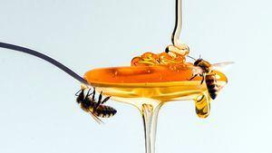 The Joy of Bees el mundo de la miel hecho arte en Relais & Châteaux