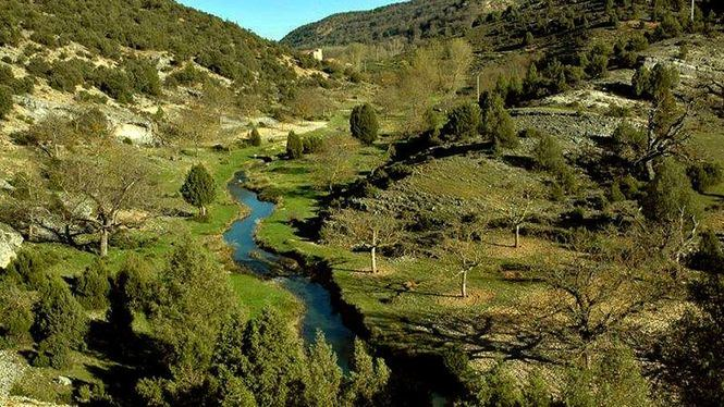 El rico patrimonio natural de Covarrubias