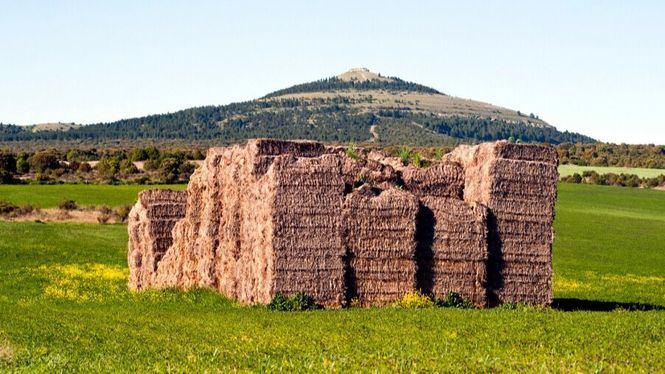Arlanza: tierra de matices al suroeste de la provincia de Burgos