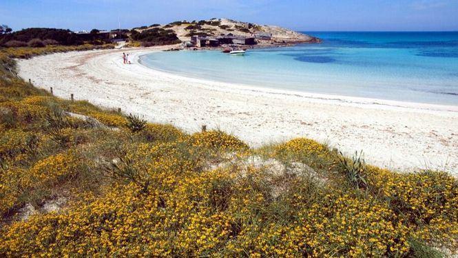 Formentera acoge dos pruebas de natación en aguas abiertas