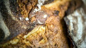 Diferencias entre el pan integral y de grano completo