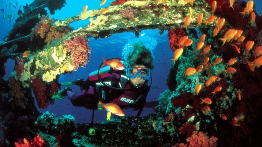 Perfecto asunto Deportes acuáticos
