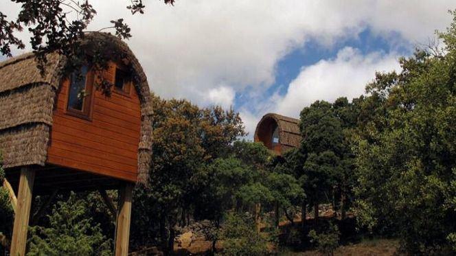Casas árbol alojamiento perfecto para este otoño