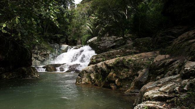El Choco Andino de Pichincha, nueva reserva mundial de biosfera