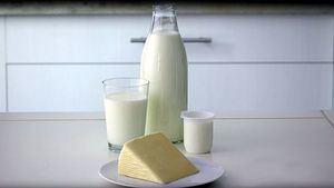 El líquido que queda de los yogures es lactosuero