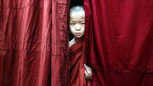 Birmania monje