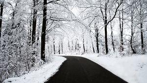Cinco consejos para elegir las cadenas de nieve para tu viaje en invierno