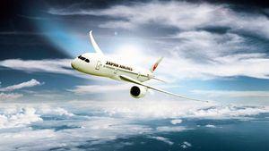 Japan Airlines, la aerolínea más puntual del mundo desde 2003