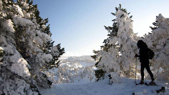 Enero en Navarra, la mejor época para disfrutar de la nieve