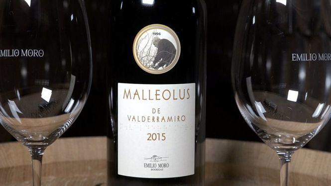 Malleolus de Valderraimro 2015, una añada de vino para enmarcar